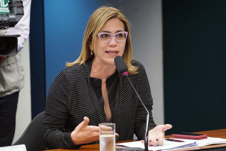 Rosana Valle: o fato de as leis não apontarem fontes de financiamento para estados comprarem as vacinas reduz o efeito dessas leis - (Foto: Pablo Valadares/Câmara dos Deputados)
