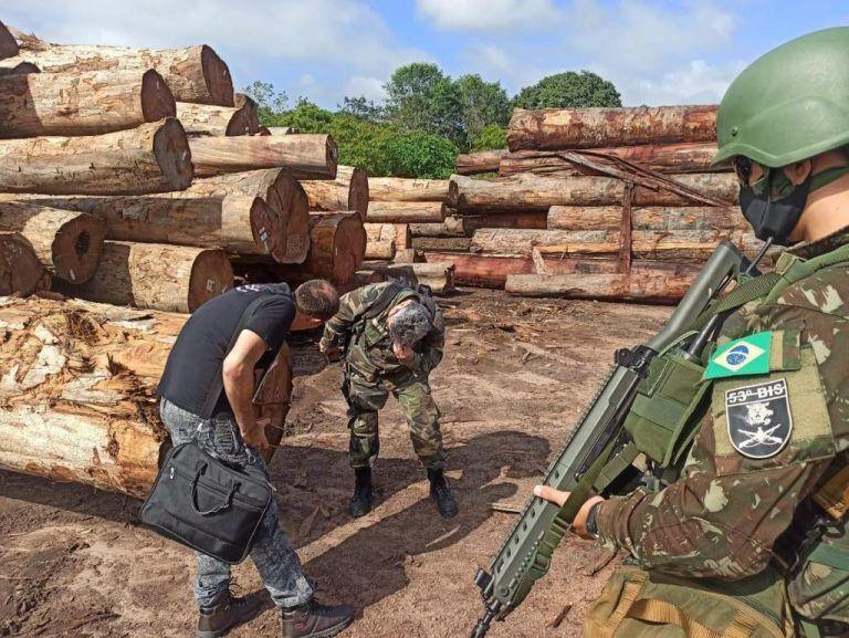 Operação Handroanthus apreendeu madeira ilegal no Amazonas - (Foto: Polícia Federal)